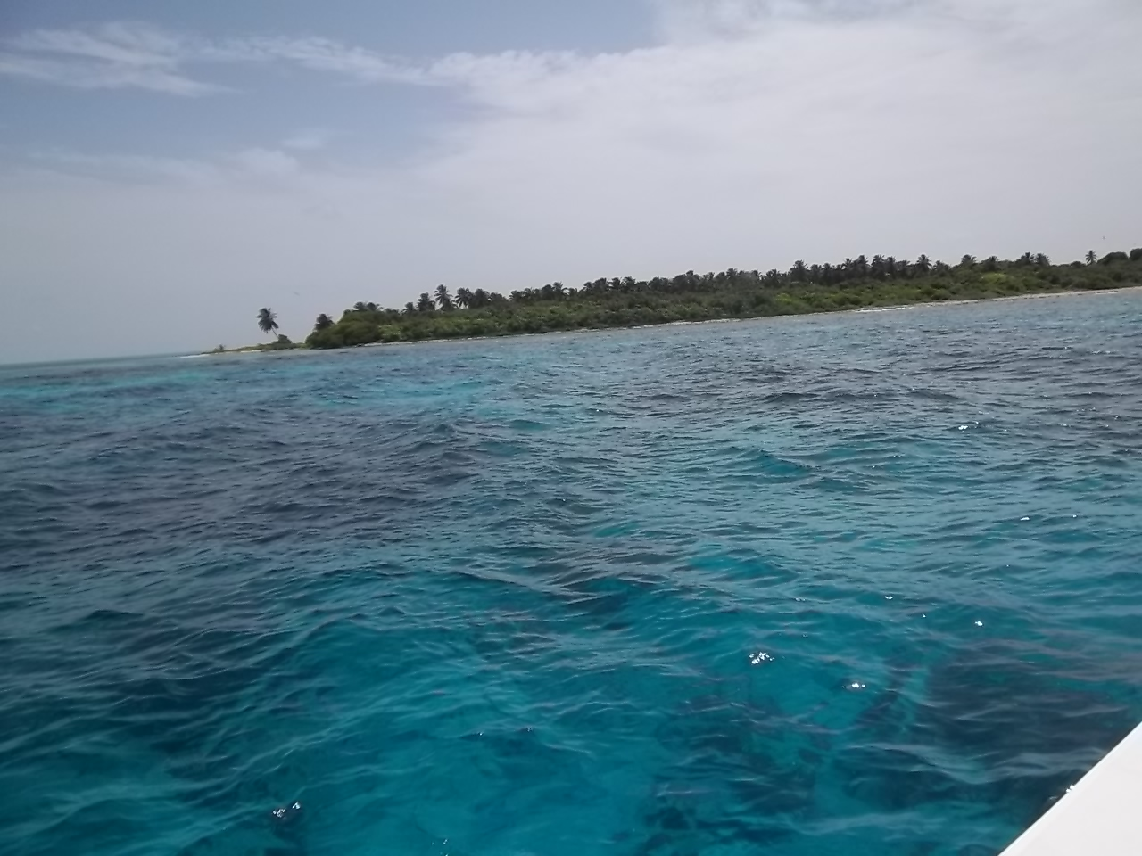 how to get to half moon caye belize